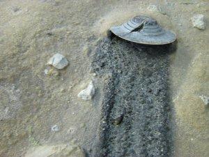 Saucer Crash