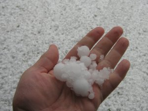 Hail Gaussling!